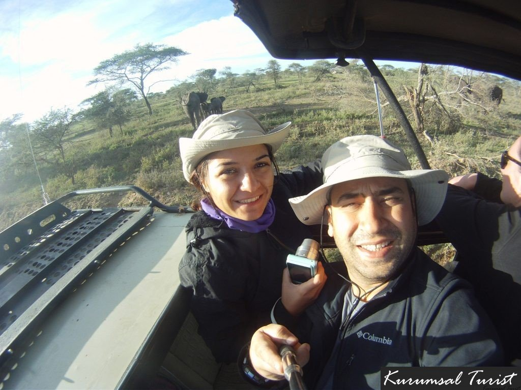 safari turu