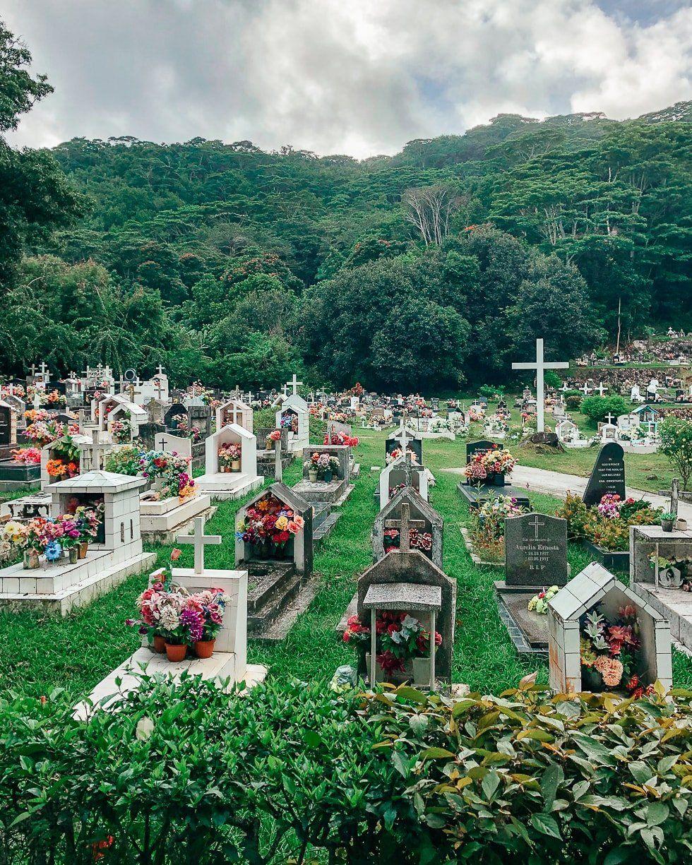 Seyseller La Digue adası çiçekli mezarlik