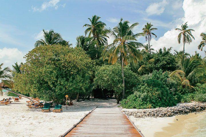 Maldivler tropik ada